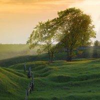 Тёплый вечер в деревне :: Илья Костин