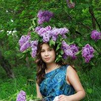 сиреневые мечты :: Оксана Чепурнаева