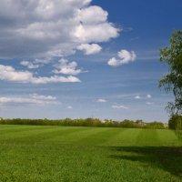 Весенние поля :: NICKIII Михаил Г.