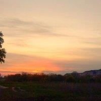 закат :: алексей сергиенко