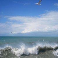 Чёрное море :: dli1953