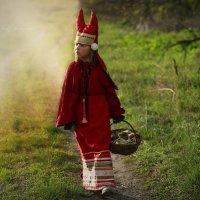 Лесные прогулки :: Вера Шамраева