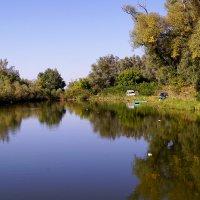 На озере :: Игорь Сикорский