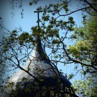 Купол Георгиевской церкви. Псков. :: Fededuard Винтанюк