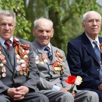 Их осталось только трое :: Олег Горобец
