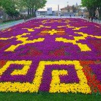 Фестиваль тюльпанов в Стамбуле :: Swetlana V