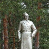 Памятник Герою Советского Союза Т.П. Курочкину :: Елена Елена