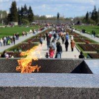 Пискарёвское кладбище :: Сергей Григорьев