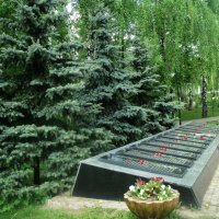 В Подмосковном городе Дзержинский в городском парке Победы май 2015 год :: Ольга Кривых