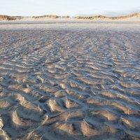 Черепаховое  море  ... :: CHAIKA '