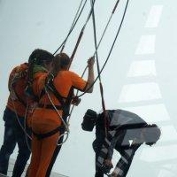 Прыгнут с высоты 338 метров? :: Наталья Тимофеева