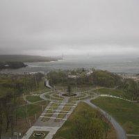 Дальневосточный федеральный университет :: Ольга Гусакова