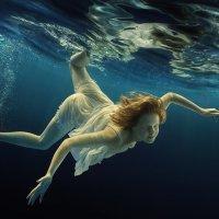 Splash :: Дмитрий Лаудин