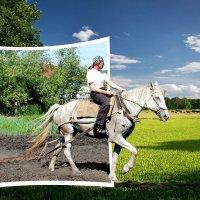 Я принц на белом коне ))) :: Сергей Феоктистов
