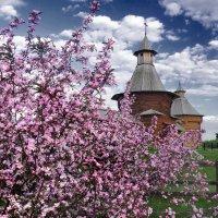 Май в Коломенском :: Nikanor