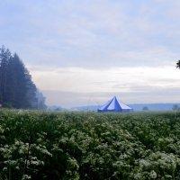 Фестиваль Тримурти : утро на берегу Волги :: Татьяна