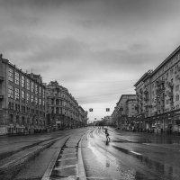 Это дождь затеял шествие с утра... :: Ирина Данилова