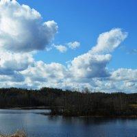 Кенозерский национальный парк :: Екатерина Булыгина