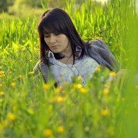 в густых травах... :: Александр Александр
