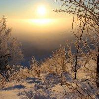 Зимнее утро. :: И.В.К. ))
