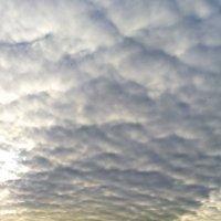 Открытое небо :: Bob Blow