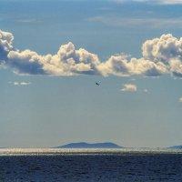 Охотское море (плёнка) :: Аnatoly Gaponenko