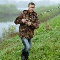 Встречи в туманное утро (2) :: Валерий Талашов