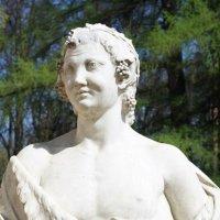 Статуя :: Елена Савельева