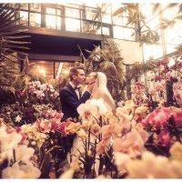 Wedding Day :: Slava Grebenkin