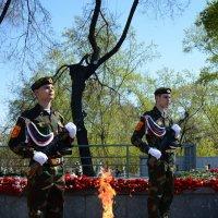 Вечный огонь :: Светлана Грызлова
