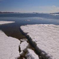 За уходящим льдом :: Вера Петрова