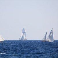 Морская гладь :: Таня Фиалка