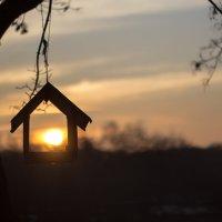 Домик ,где живет солнышко. :: Ольга Афанасьева