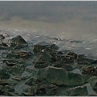 Морские волки :: Кай-8 (Ярослав) Забелин