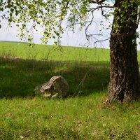 Лежит камень в степи, а под него вода бежит, а на камне написано слово... :: NICKIII Михаил Г.