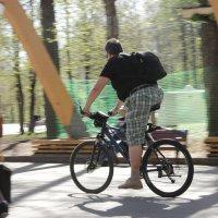 Велосипедист :: Антон Зайцев