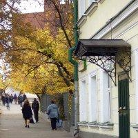 Ветви и крыльцо или заимствование у природы :: Денис Масленников