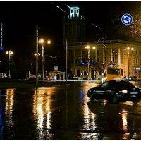 Новогодний дождь в Севастополе :: Кай-8 (Ярослав) Забелин