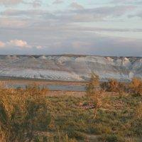 Западный Казахстан :: Елена Кислых