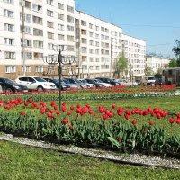 Краски города. :: Андрей Синицын