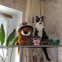 Найди кота) :: Canon PowerShot SX510 HS