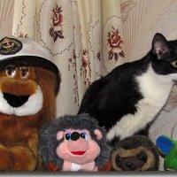 Кот в игрушках :: Canon PowerShot SX510 HS