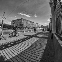 Шагнуть без правил -  через клетку? :: Ирина Данилова