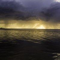 А, дождь все ближе! Река Лиелупе :: Gennadiy Karasev