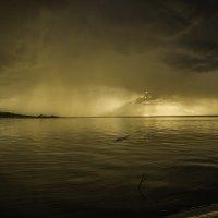 Сорвались первые капли. Река Лиелупе :: Gennadiy Karasev