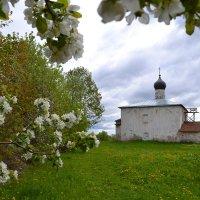 Весенний Псков :: Наталья Левина