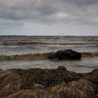 Холодный ветер с моря :: Валентин Кузьмин