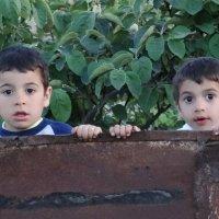 Соседи по двору :: Gudret Aghayev