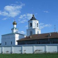 Васильевский монастырь :: Сергей Цветков