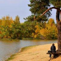 На едине с природой :: Лидия Рьянова